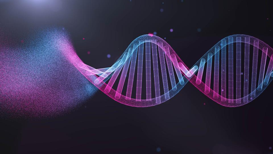 Molecular Biology [BT-3502]